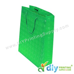 3D Paper Bag (L 24 X W 18 X H 7.5cm) (Green)