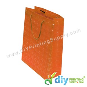3D Paper Bag (L 24 X W 18 X H 7.5cm) (Orange)